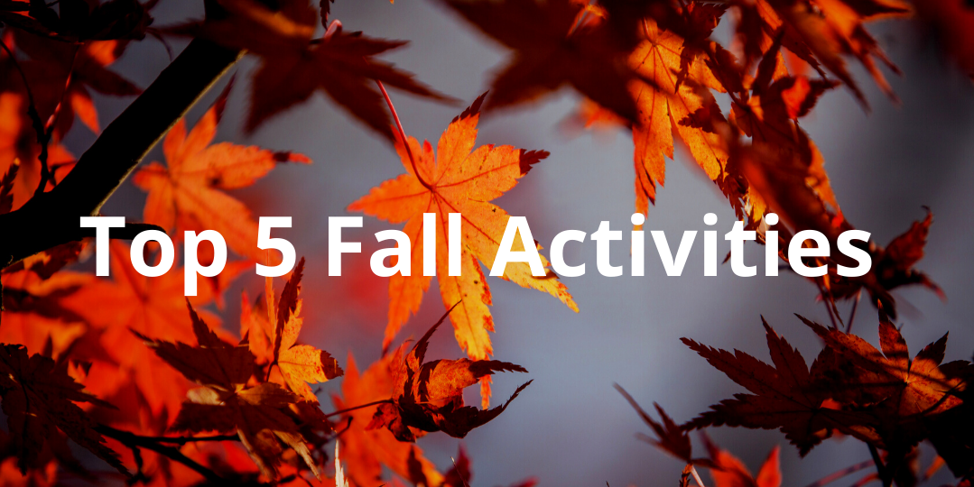 Top 5 Fall Activities